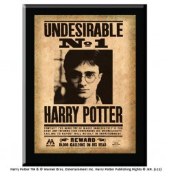 7CM - PLAQUE UNDESIRABLE N°1 HARRY POTTER-1