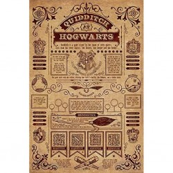 HARRY POTTER - POSTER 61X91.5 - QUIDDITCH AT HOGWARTS