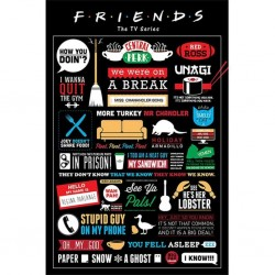 FRIENDS - POSTER 61X91.5 - INFOGRAPHIC
