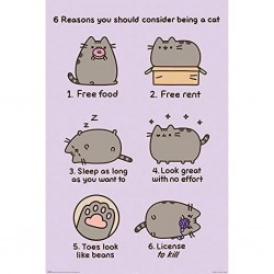 ANIMATION - PUSHEEN - POSTER 61X91.5 - REASONS TO BE A CAT