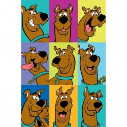ANIMATION - SCOOBY-DOO - POSTER 61X91.5 - THE MANY FACES OF SCOOBY DOO