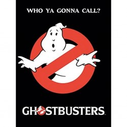 GHOSTBUSTERS - TOILE 60X80 - WHO YOU GONNA CALL?